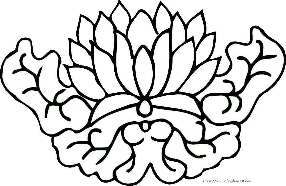 花朵简笔画 植物荷花简笔画,荷花,简笔画,绘画书法,文化艺术,莲花