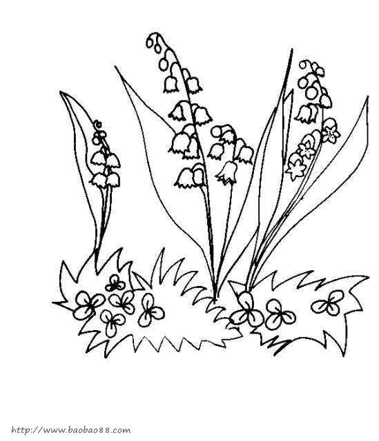 百合 儿童简笔画大全 植物简笔画