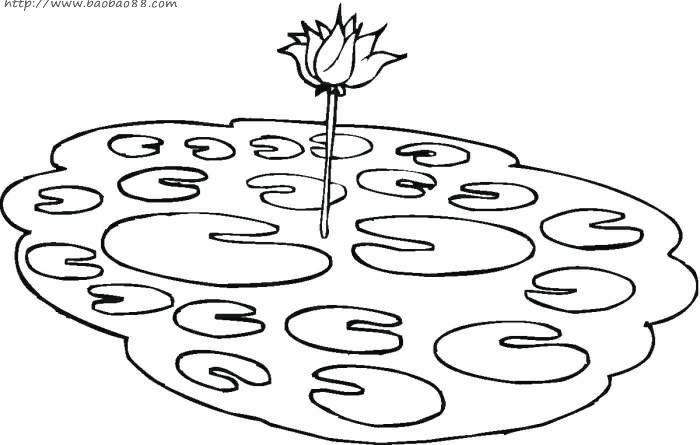 植物简笔画学习小孩