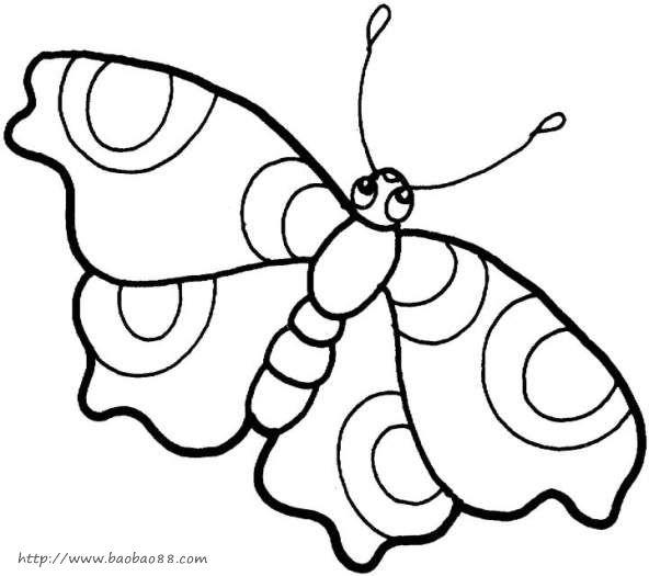 蝴蝶> 花朵上的小蝴蝶简笔画