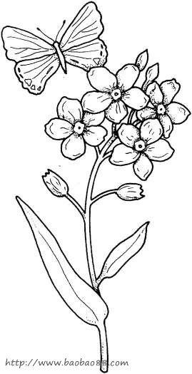 小班幼儿简笔画花 蝴蝶停在花上简笔画 蝴蝶停在花上简笔画