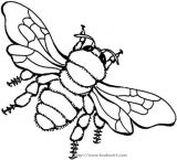 蜜蜂简笔画3