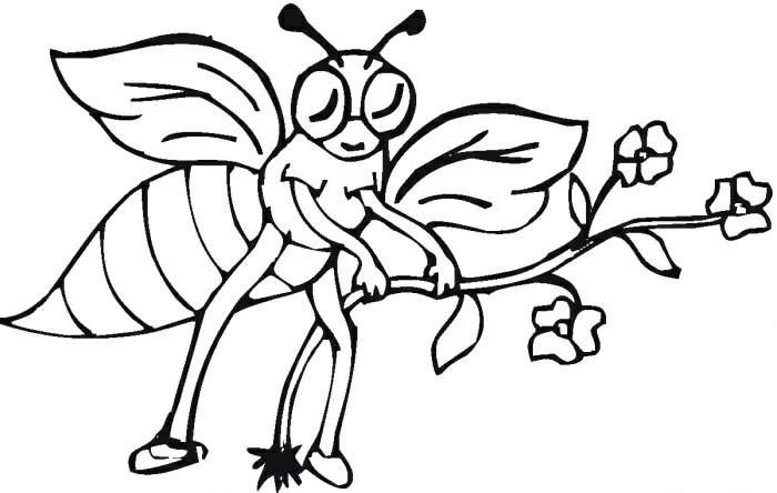 蜜蜂简笔画[26p]_昆虫简笔画(涂色图片)