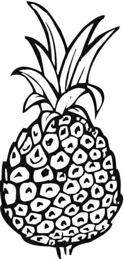 菠萝卡通简笔画