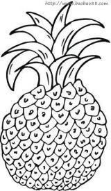 菠萝简笔画4
