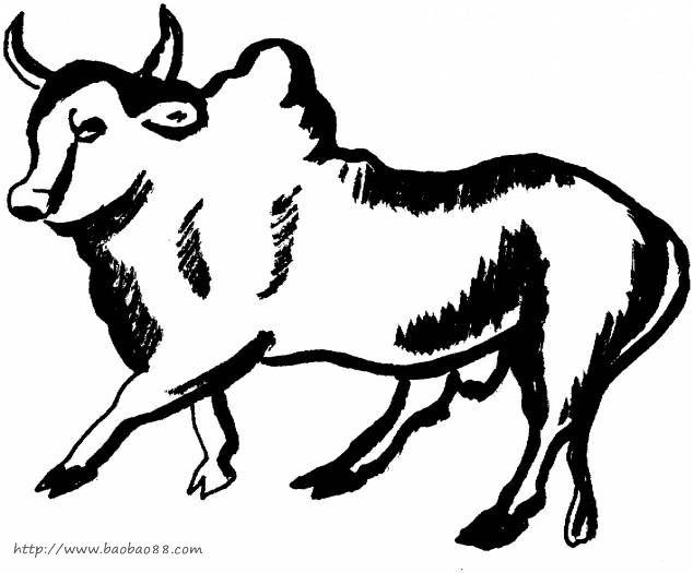公牛和斗牛士简笔画7