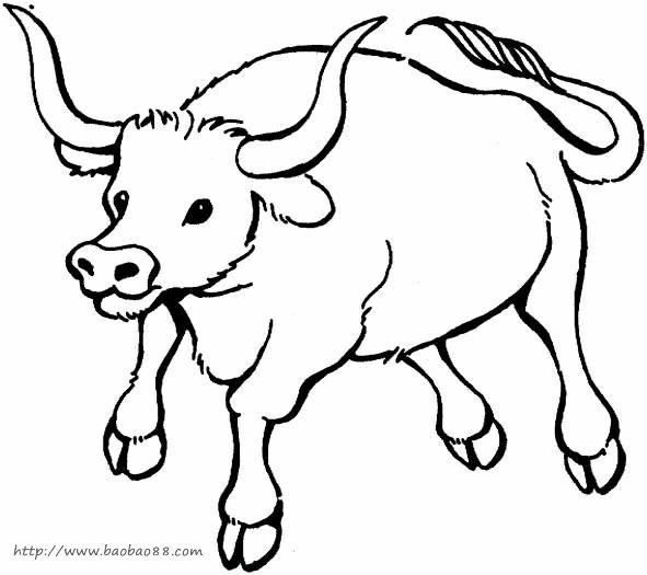公牛和斗牛士简笔画