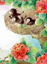 科普童话-小鸟的午睡3