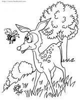 森林主题的简笔画2