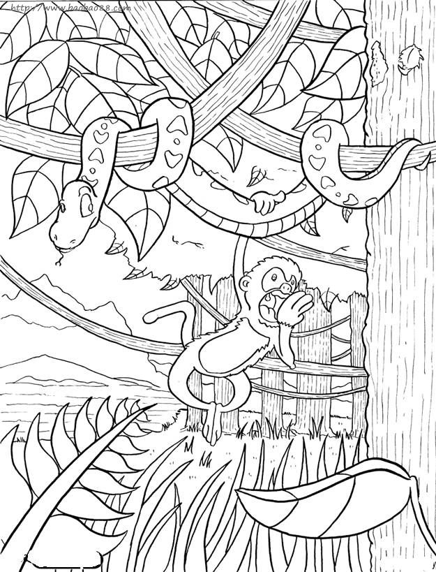 for Rainforest leaves coloring pages