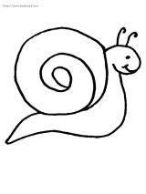 蜗牛简笔画2