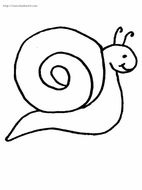 蜗牛简笔画[11p]_昆虫简笔画(涂色图片)