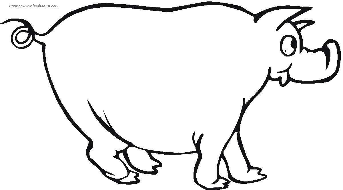 卡通兔子简笔画动物 卡通兔子动物简笔画步骤图片