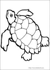 海洋动物简笔画[10p]_动物简笔