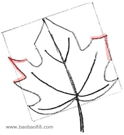 枫叶图案简笔画