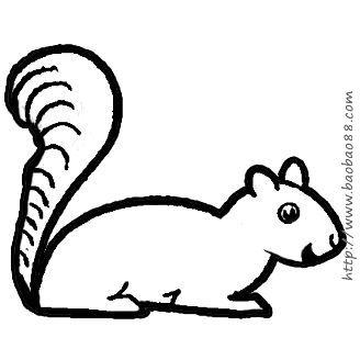 画卡通小松鼠[6p]_学习绘画简笔画(涂色图片)