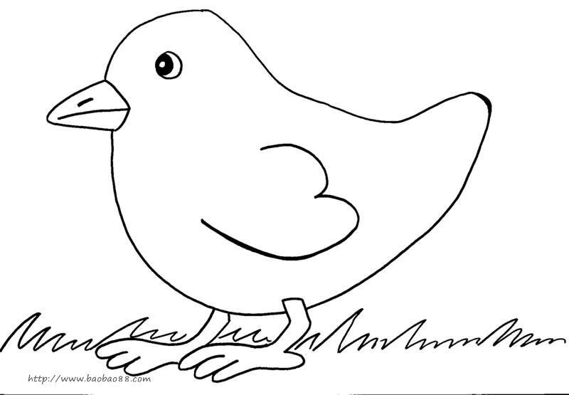 简单小动物简笔画16