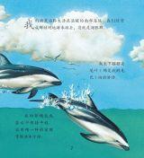 鲸和海豚5