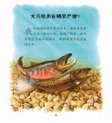河流动物4