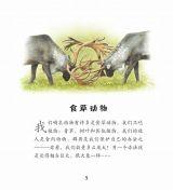 大象和其他食草动物3