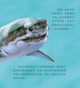 鲨鱼和鳐鱼5
