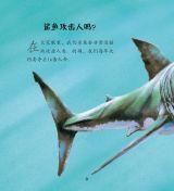 鲨鱼和鳐鱼4