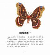 蝴蝶和蛾子3