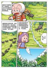 昆虫王国的秘密3