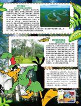 《兔巴哥》神秘莫测的原始森林3