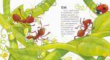 探索生物的奥秘-蚂蚁2
