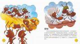 探索生物的奥秘-蚂蚁4