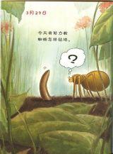 蚯蚓的日记4
