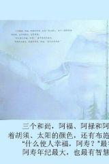 石头汤(琼・穆特)4