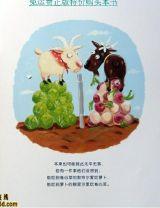 两只羊的故事5