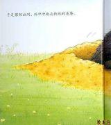 獾的美餐4
