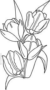 点线面的绘画图片_花类简笔画(一)[108P]_植物简笔画(涂色图片) - 【宝宝吧】