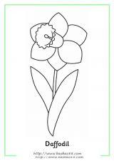 花朵填色图[16p]_植物简笔画(涂色图片)