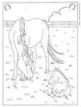 骑马填色图4