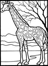 鹿的简笔画[42p]_动物简笔画(涂色图片)