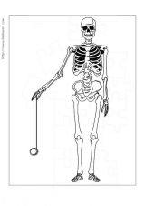 人体简笔画2