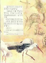 变成鹤的国王6