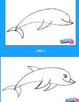 学画海洋动物5