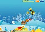 冒险游戏:小海龟旅行