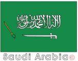 (沙特阿拉伯)国旗涂色