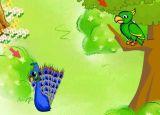 动物单词:Peacock 和 Parrot