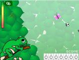 青蛙抓小虫