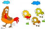 幼儿涂色:公鸡带小鸡