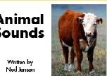 animal sounds 练习
