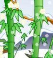 植物能预测地震吗?