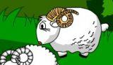 保护小羊[小学音乐]